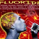 fluor_dess