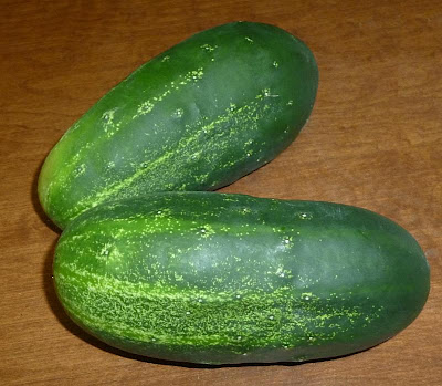 Survival Super Foods – Cucumbers