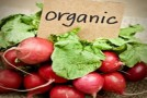 Top 10 Healthy Yet Cheap Organic Foods