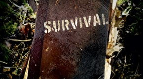 38 Survival Downloads and Handbooks – Pioneering, SHTF, Engineering, Urban Gardening, Defense, and More