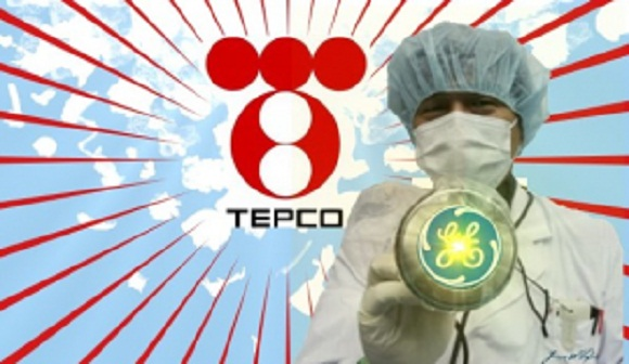 Former Fukushima Worker Sues TEPCO for Downplaying Radiation Dangers