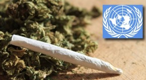 United Nations threatens Colorado, Washington state over marijuana decriminalization laws