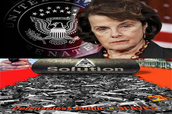 Sen Feinstein suggests national buyback of guns