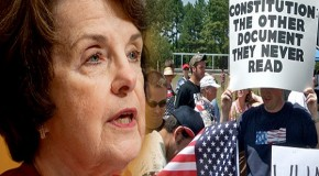 Democrats Move to Strip Political Enemies of the Right to Own Firearms