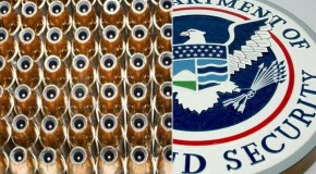 Did DHS Just Award an Ammunition Contract to a Shell Corporation?