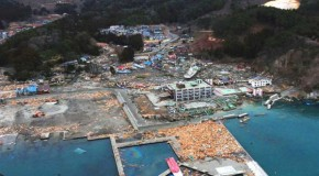 Is Fukushima A Factor In Japans Record Deaths In 2011-12?