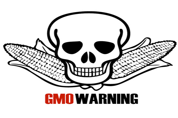 Is Genetically Modified Food Killing Us