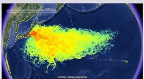 Media Silent on Fukushima Radiation Impact in US