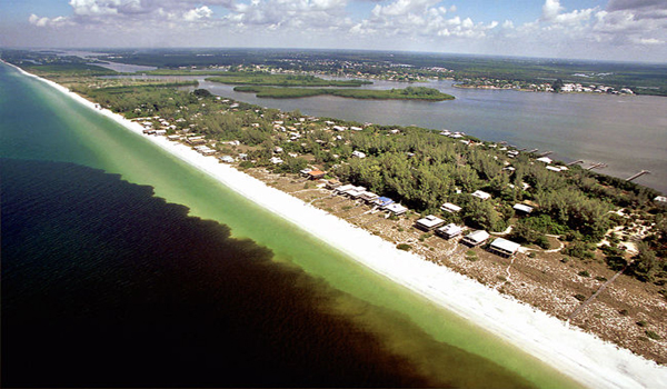 The Truth About Red Tide's Manmade Causes and Health Effects