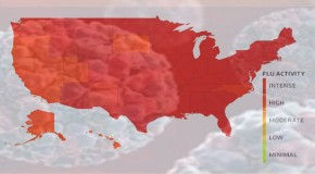 Widespread U.S Flu, Leading a Range of Winter's Ills
