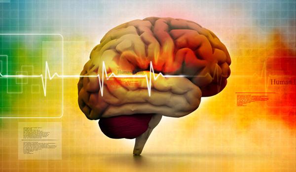 Leading Geneticist Human Intelligence is Slowly Declining