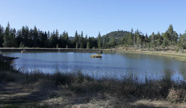 Oregon man in Possession of 13 Million Gallons of Illicit Rainwater Sentenced to Jail