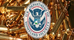 Big Flak For Big Sis and Homeland Security