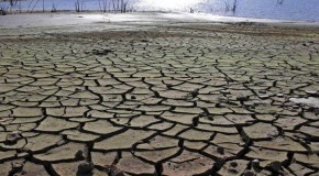 Green fatigue sets in: the world cools on global warming