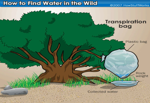 How To Extract Water From Thin Air