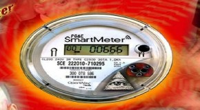 My Son Died – Smart Grid Meters
