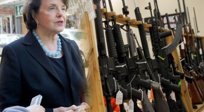 Senate committee prepares final solution on Second Amendment