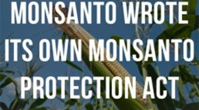 A Simple List of Companies to Avoid that do business with Monsanto