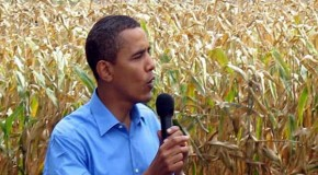 How did Barack Obama become Monsanto's man in Washington?
