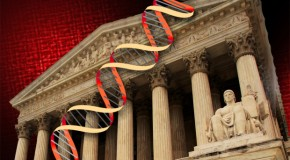 Supreme Court to decide if human genes can be patented
