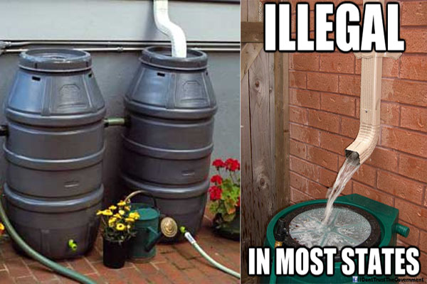 Video Collecting Rainwater Now Illegal in Many States