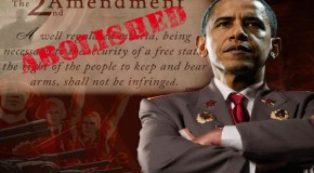 Video: Democrat Admits Obama Agenda Is Total Gun Ban