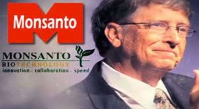 Bill Gates Dodges Questions on Why He Owns 500,000 Shares of Monsanto