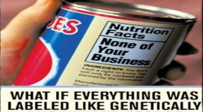 GMO Labeling Bill Introduced by Boxer, DeFazio &#8211; Right to Know Act