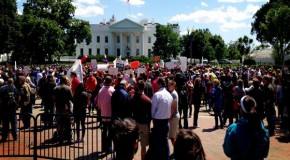 Millions March Against Monsanto: A Global Awakening Covered Up by the Media