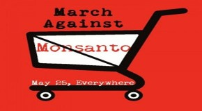 "Monsanto Hides Behind Cries of ""Elitist"" in Response to Tremendous Global Social Media Movement"