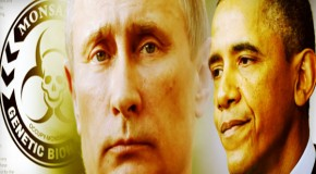 "Russia Warns Obama: Global War Over ""Bee Apocalypse"" Coming Very Soon"