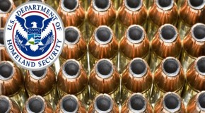 US Senator: Big Sis Buying Ammo To Dry Up Supply