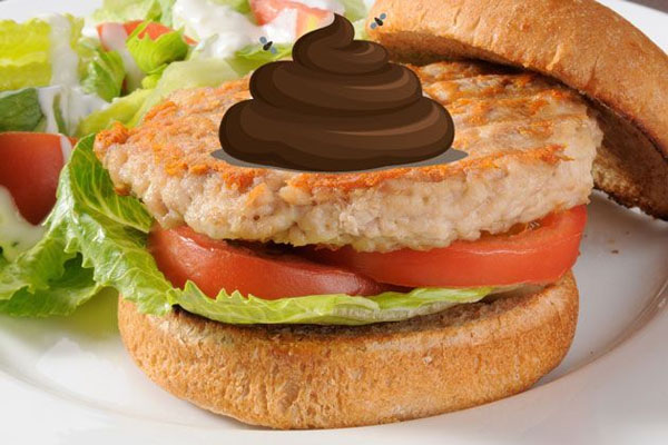 You Won't Believe What's in Your Turkey Burger