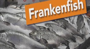 59 Supermarkets Say No to Frankenfish