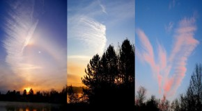 Are Chemtrails & Disease Pandemics linked to Pharmaceutical Companies and their Economic Growth?
