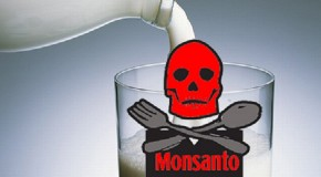 FOX Reporters Fired For Reporting the Truth About Monsanto Milk