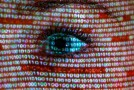 Microsoft, Facebook release stats to reassure users on NSA surveillance