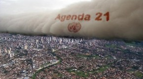 The Multiple Prongs of Agenda 21