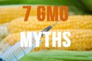 Top 7 Myths About GMO Foods & Monsanto