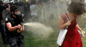 Turkey's resistance image forged as pepper spray burns woman in red dress