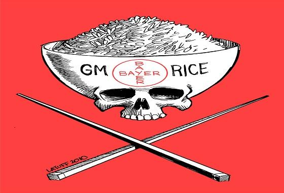 Genetic rice lawsuit in St. Louis settled for $750 million