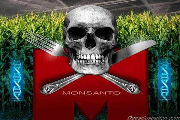 Seeds of Destruction The Diabolical World of Genetic Manipulation