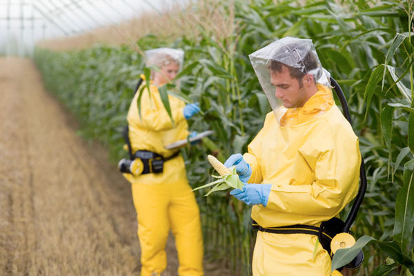 The Sinister Monsanto Group 'Agent Orange' to Genetically Modified Corn