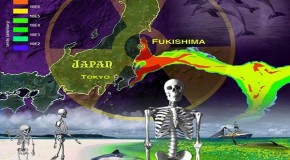 Fukushima: A Nuclear War without a War