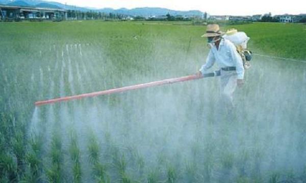 Second-Largest Dutch City Bans Monsanto's Roundup Herbicide