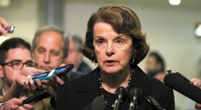 Feinstein Exploits Navy Yard Shooting to Renew Call to Disarm Mr. and Mrs. America