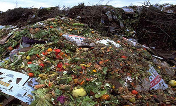 About 40 Percent Of All Food In The United States Is Thrown In The Garbage