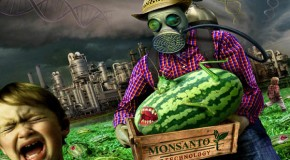 In the Beginning There Was Monsanto
