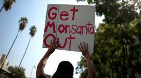 Monsanto's pesticides poisoning Argentina – report
