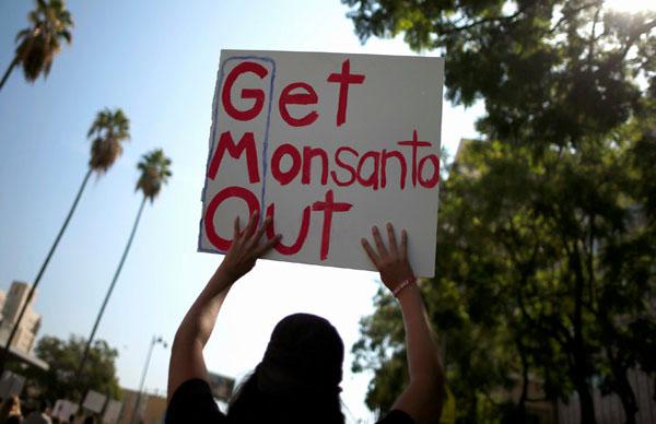 Monsanto pesticides poisoning Argentina – report